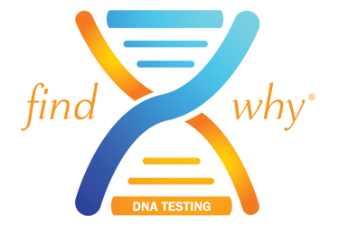 Specialty-Lab-Testing-DNA-375x250