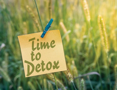 Time-To-Detox-375x279