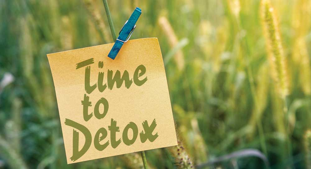 Techniques to Assist Detoxification